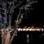 【スポット】伸びやかに広がる光、立川駅南口イルミネーション