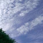 【スポット】愁いを誘う、立川の秋空