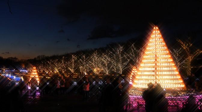 winter vista illumination2013