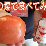 立川南駅を降りたら巨大なトマトが売られていたのでその場で食べてみた【立川グルメ】