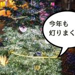 もう見た? 立川駅北口のイルミネーションが超キレイ!!!
