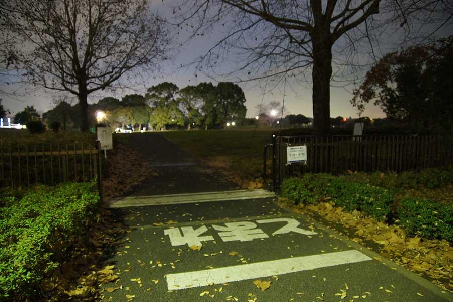 昭和記念公園illumination5