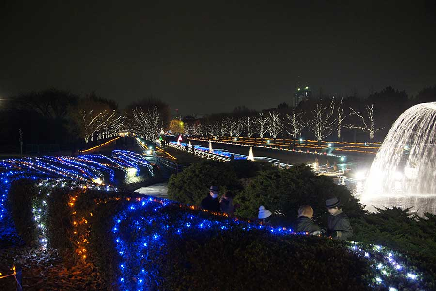 昭和記念公園illumination19