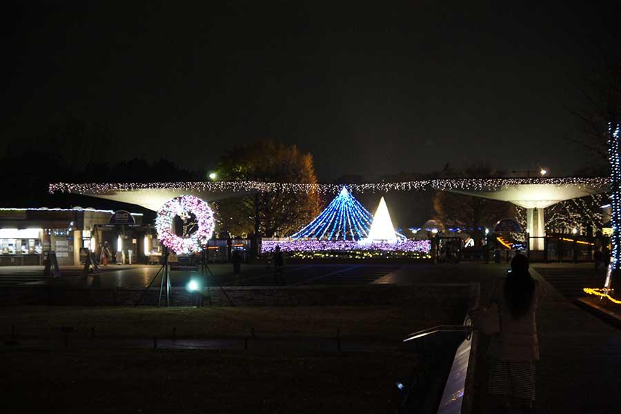 昭和記念公園illumination8