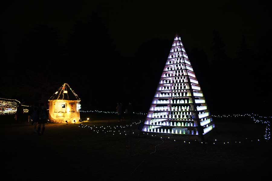 昭和記念公園illumination25