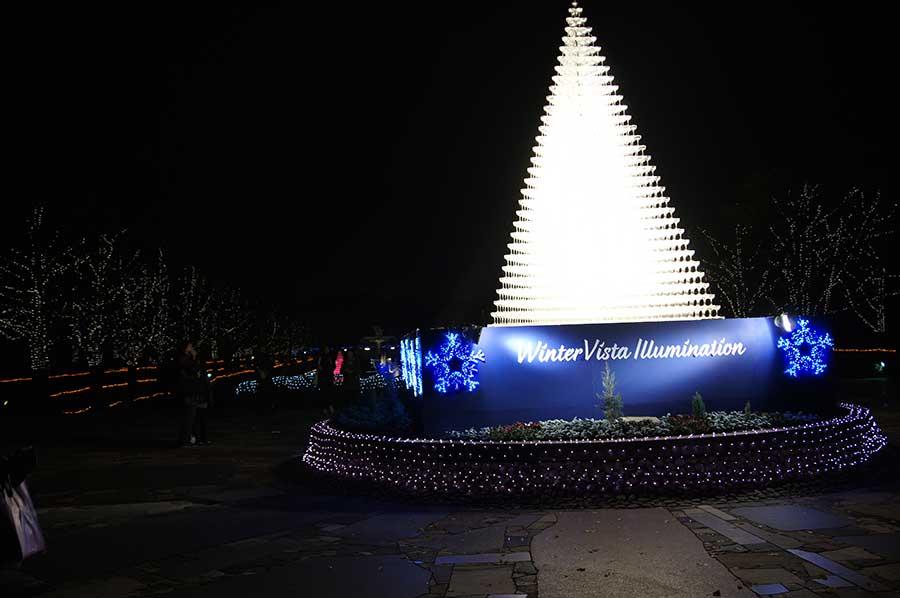 昭和記念公園illumination12