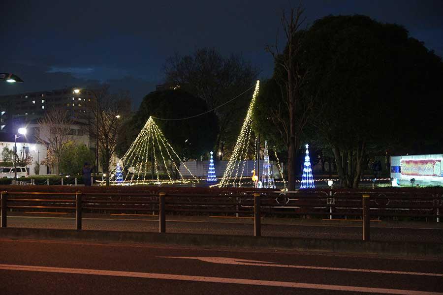 昭和記念公園illumination1