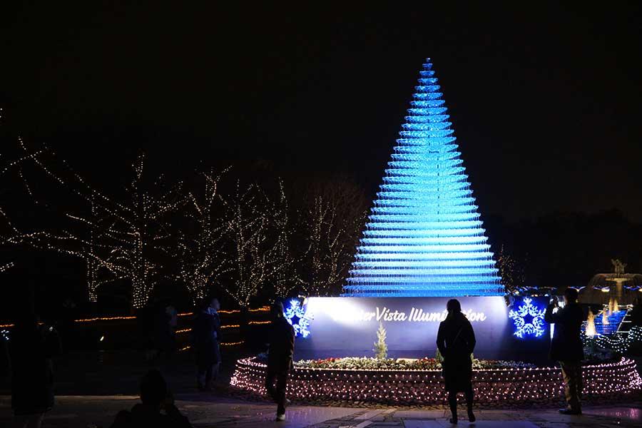 昭和記念公園illumination30