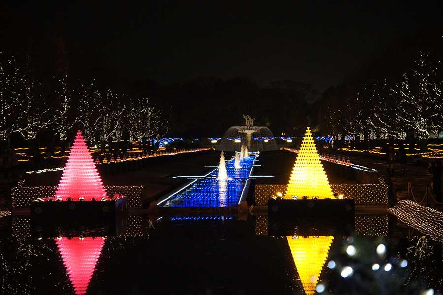 昭和記念公園illumination14