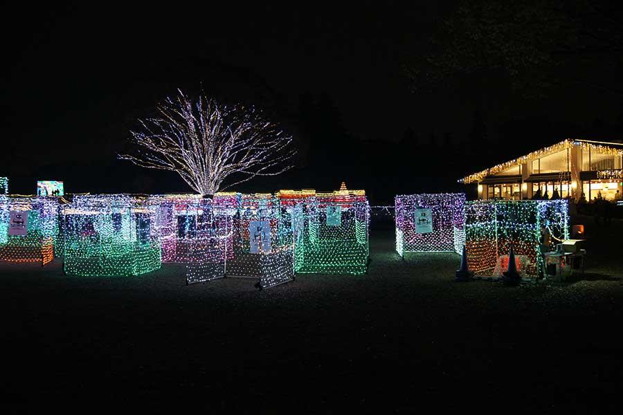 昭和記念公園illumination22