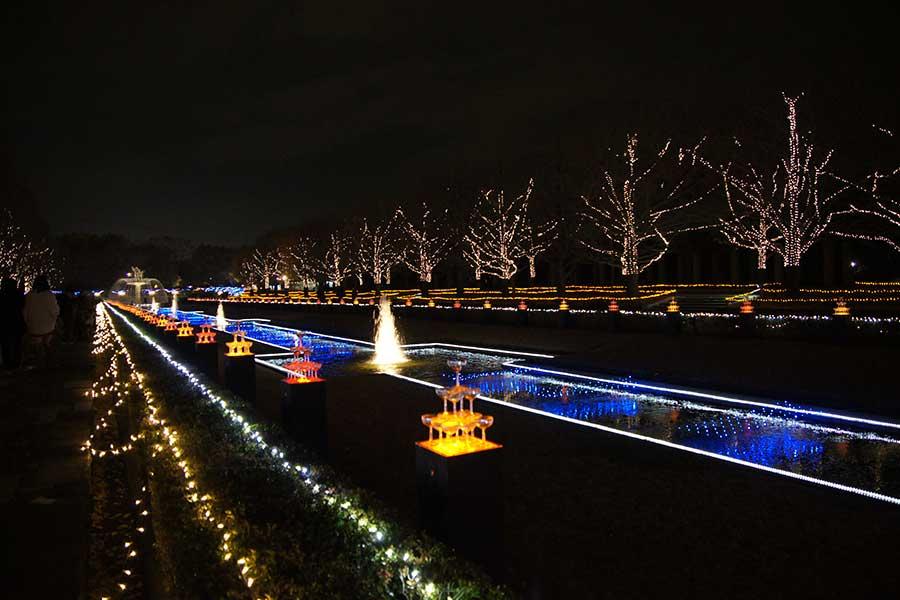 昭和記念公園illumination16