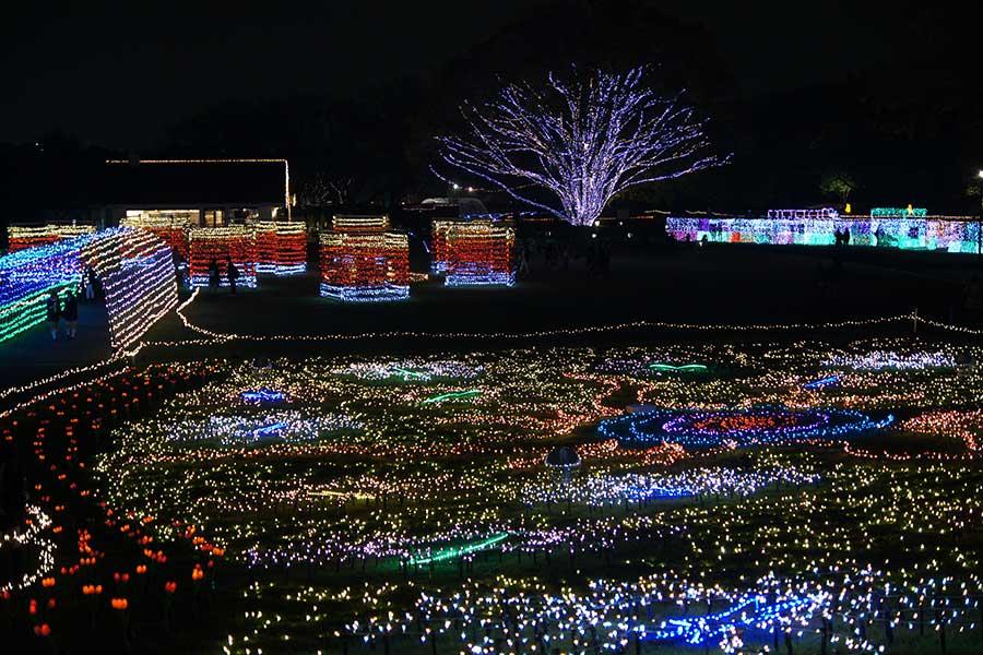 昭和記念公園illumination27