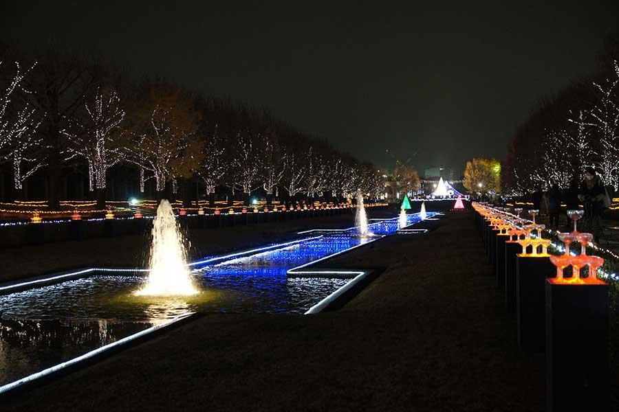 昭和記念公園illumination18