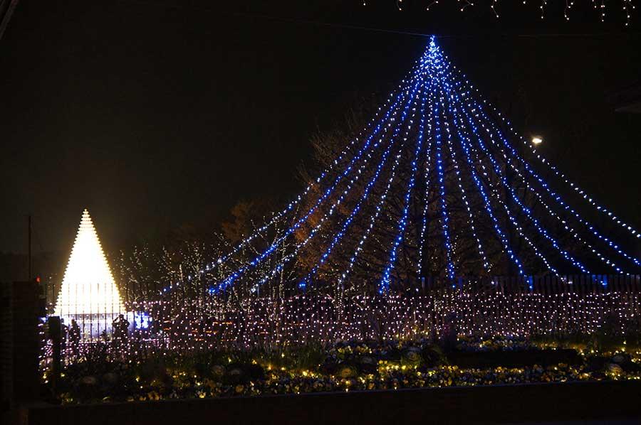 昭和記念公園illumination10
