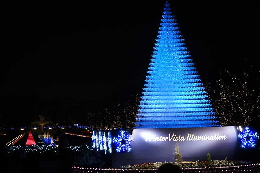 昭和記念公園illumination11