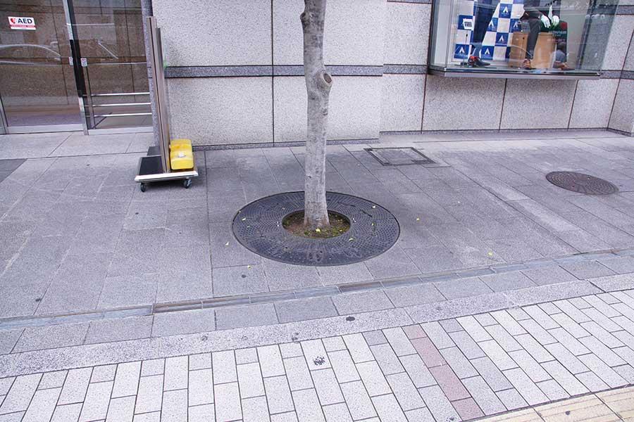 ポケモンGO38