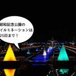 今年は花火が3日間!国営昭和記念公園のイルミネーション『Winter Vista Illumination2016』を見に行ってきた!