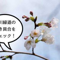 negawa_ec